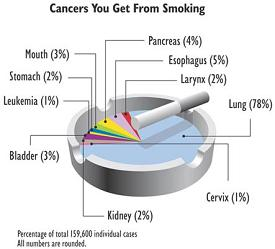 The various cancers caused by smoking