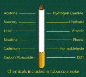 The chemicals contained in cigarettes